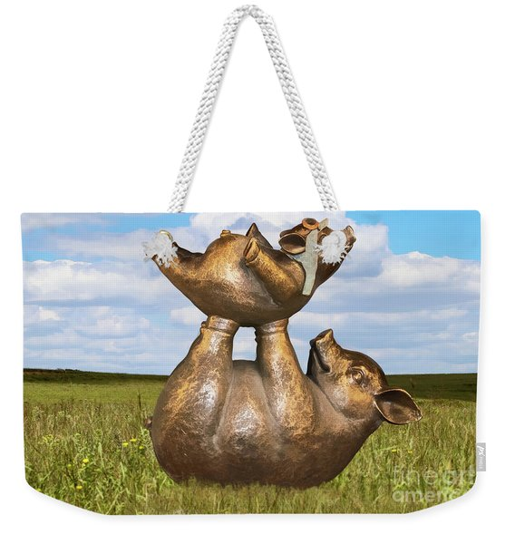 Teaching A Pig To Fly - Mother Pig In Grassy Field Holds Up Baby Pig With Flying Helmet To Teach It  Weekender Tote Bag