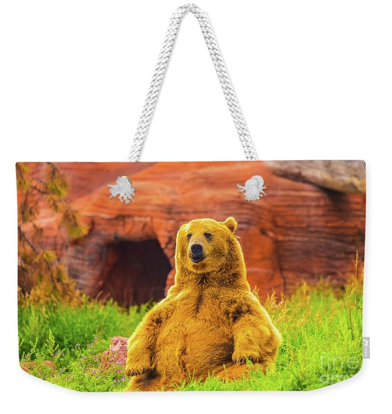 Weekender Tote Bag featuring the photograph Teddy Bear by Dheeraj Mutha
