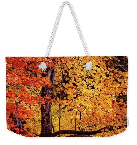 The Colors Of Fall Weekender Tote Bag