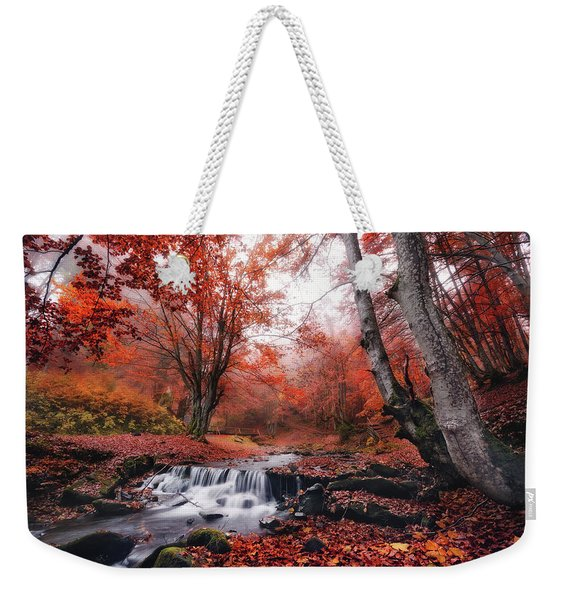 The Delights Of Late Autumn Weekender Tote Bag