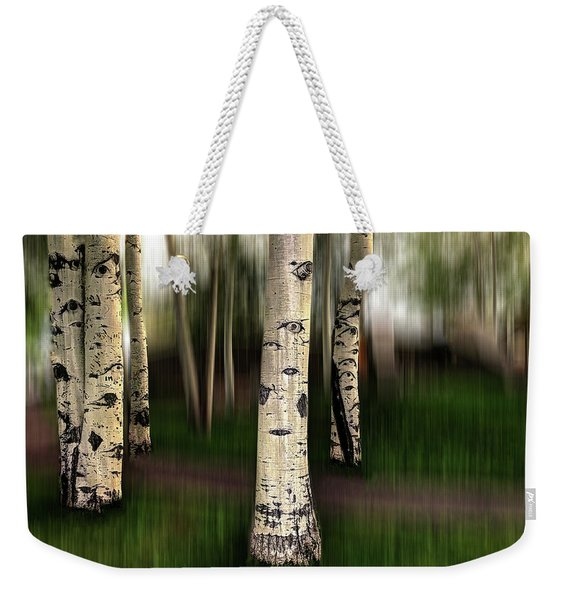 Weekender Tote Bag featuring the photograph The Eyes Of Aspen Are Upon Us by Wayne King