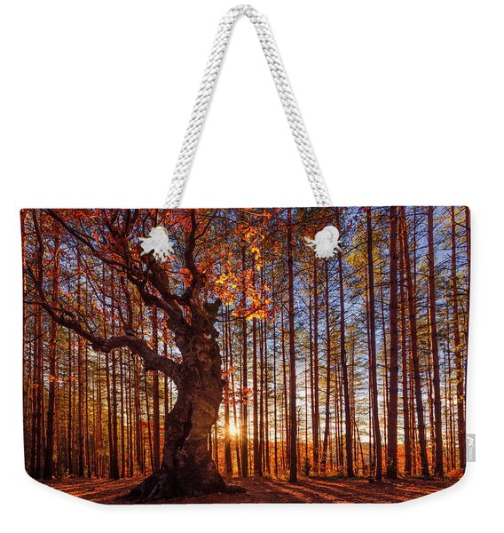 The King Of The Trees Weekender Tote Bag