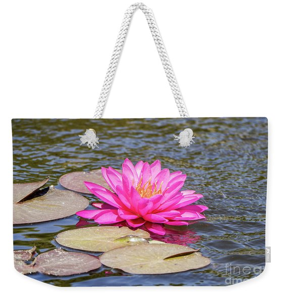 Weekender Tote Bag featuring the photograph The Lady Is Pink 03 by Arik Baltinester