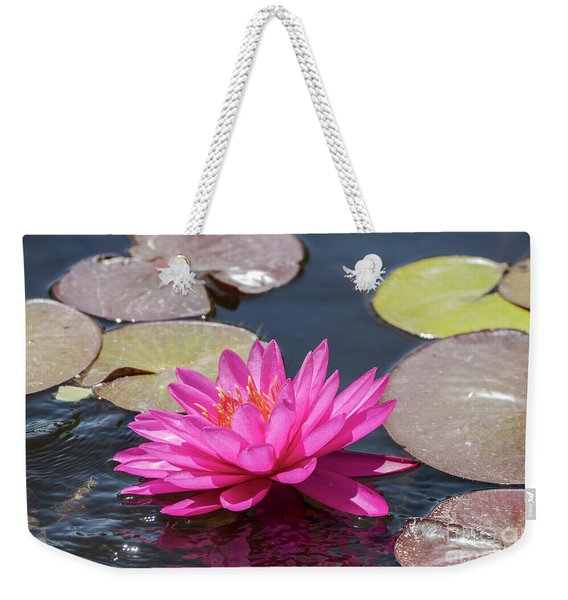 Weekender Tote Bag featuring the photograph The Lady Is Pink by Arik Baltinester