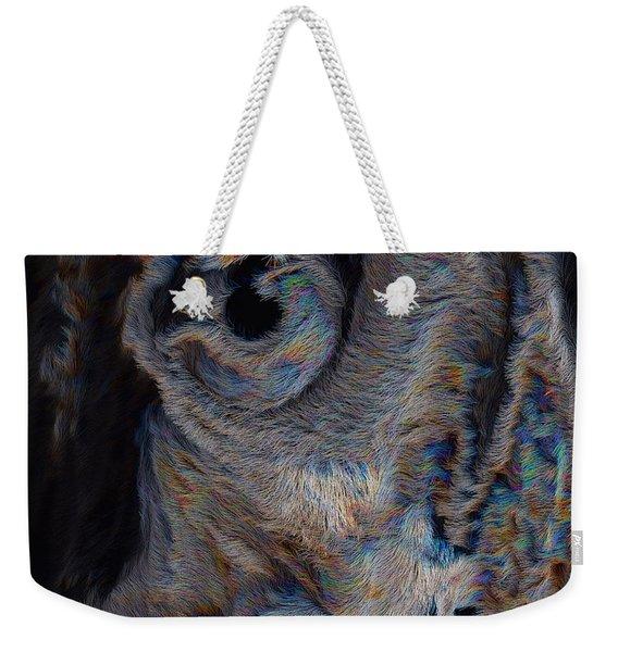 The Old Owl That Watches Weekender Tote Bag