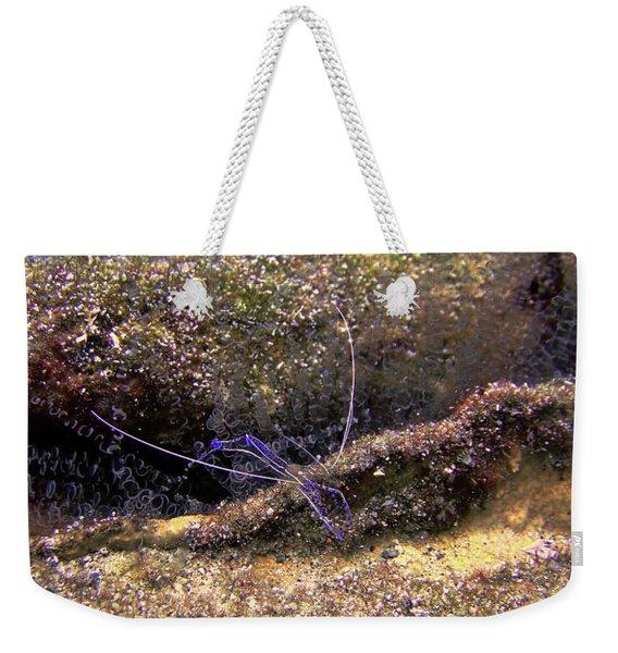 The Pederson Corkscrew Weekender Tote Bag