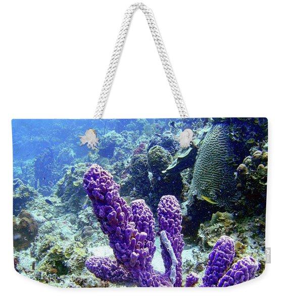 The Purple Sponge Weekender Tote Bag