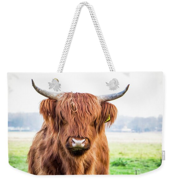 Weekender Tote Bag featuring the photograph The Scottish Highlander by Anjo Ten Kate