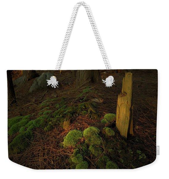 The Secret Weekender Tote Bag