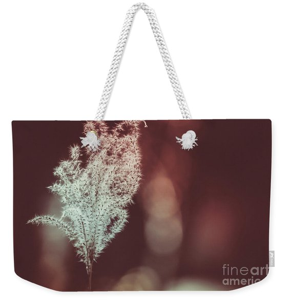 Weekender Tote Bag featuring the photograph The Shine by Dheeraj Mutha