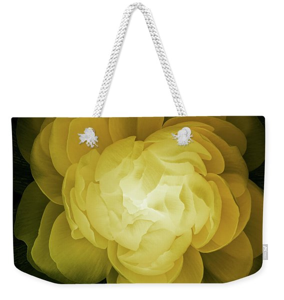 The Sorceress Number Two Weekender Tote Bag
