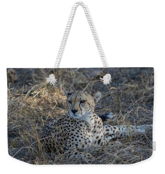 Cheetah In Repose Weekender Tote Bag