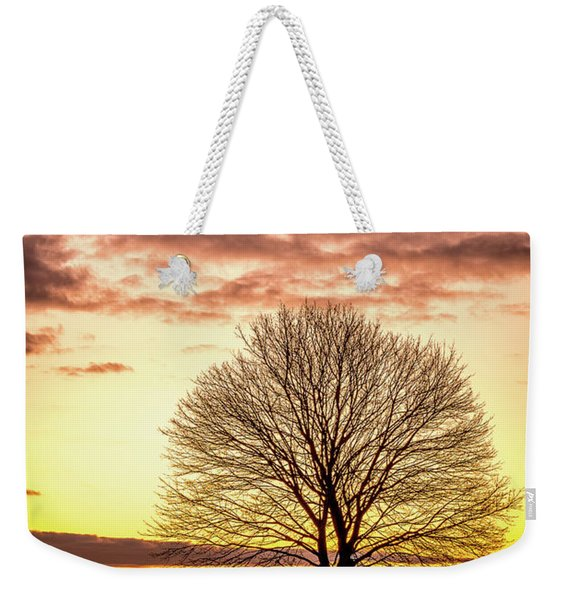 Weekender Tote Bag featuring the photograph The Tree by Jeff Sinon