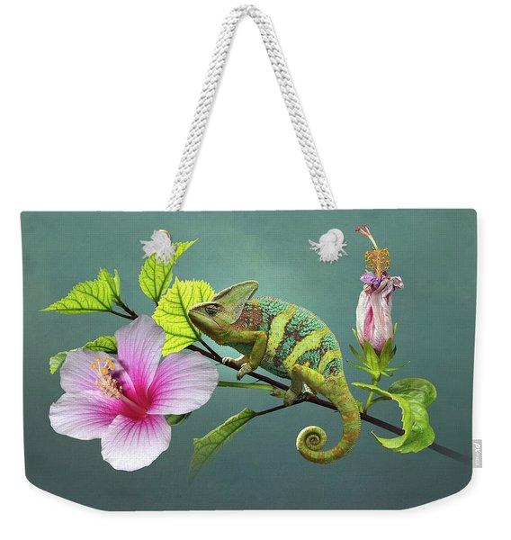 The Veiled Chameleon Of Florida Weekender Tote Bag