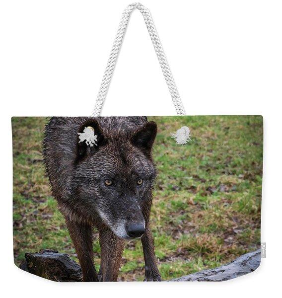 This Is My Log Weekender Tote Bag