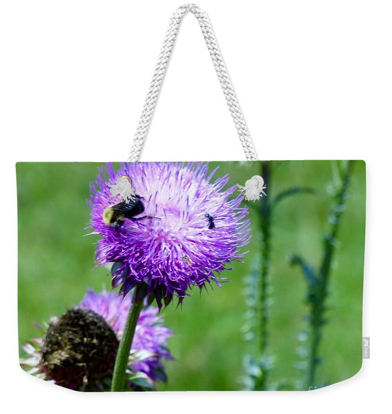Thistle Visitors Weekender Tote Bag