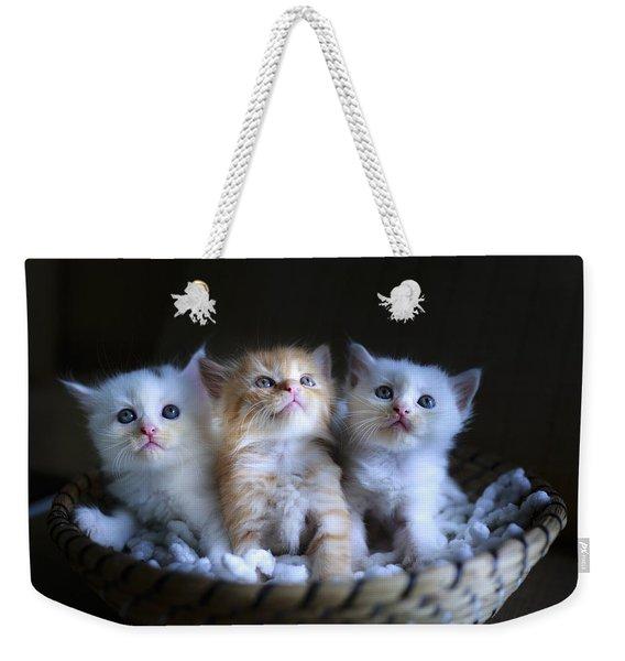 Three Little Kitties Weekender Tote Bag
