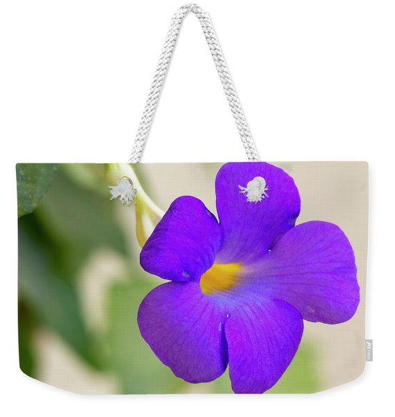 Thunbergia Erecta Bush Clock Vine Weekender Tote Bag
