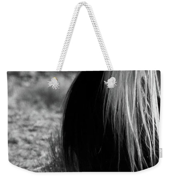 Weekender Tote Bag featuring the photograph Tierra by Catherine Sobredo