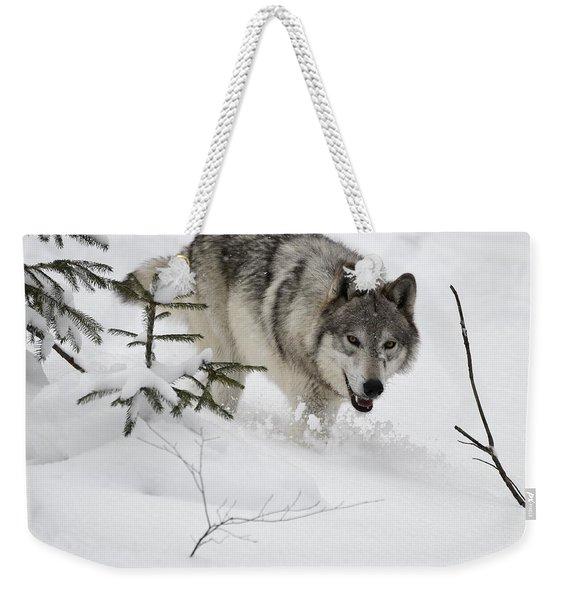 Timber Wolf Weekender Tote Bag