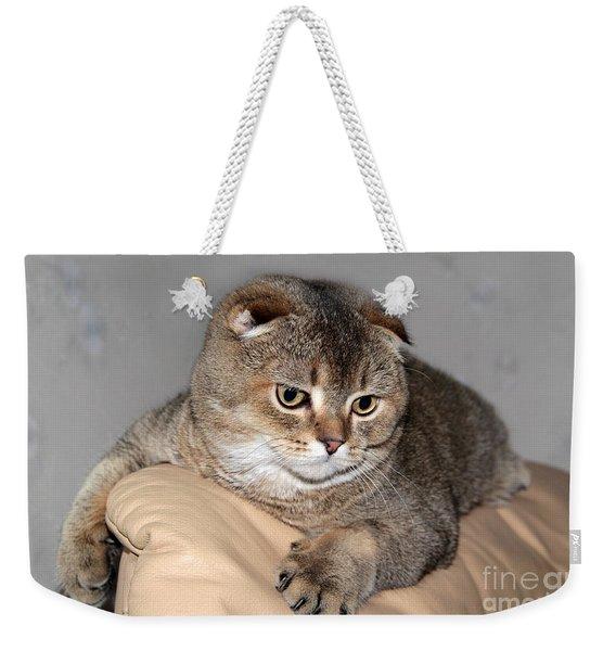 Timoshka Collection - 7 Weekender Tote Bag