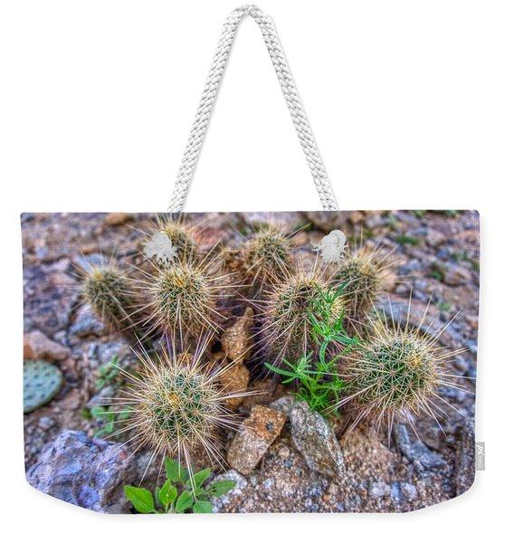 Tiny Cactus Weekender Tote Bag