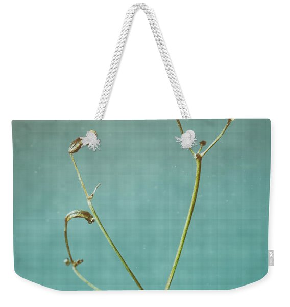 Tiny Seed Pod Weekender Tote Bag