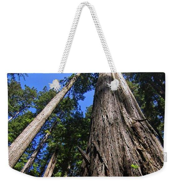 Towering Redwoods Weekender Tote Bag