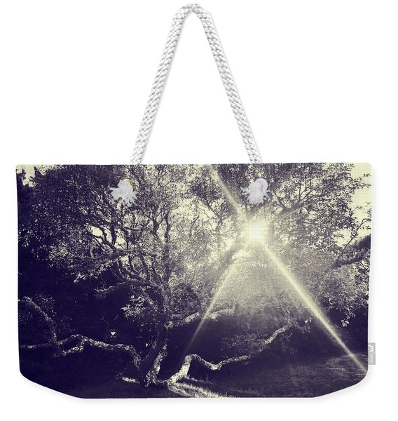 Tree At Sunset Weekender Tote Bag