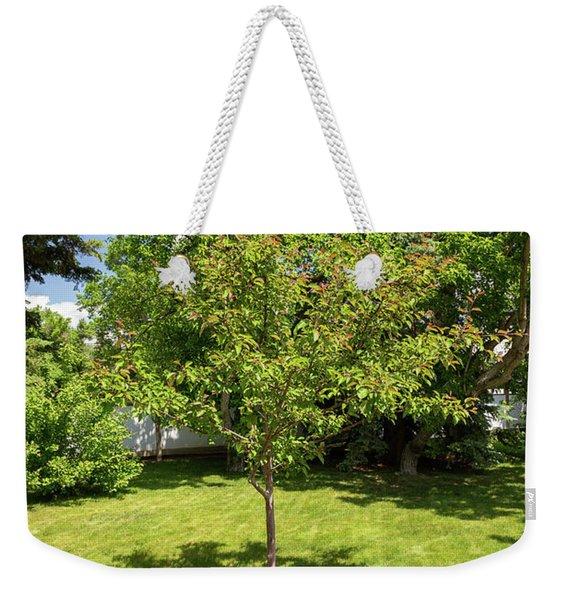 Tree In The Garden Weekender Tote Bag