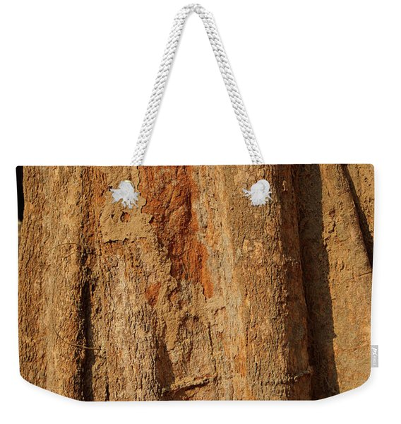 Tree Trunk And Bark Of Chambak Weekender Tote Bag