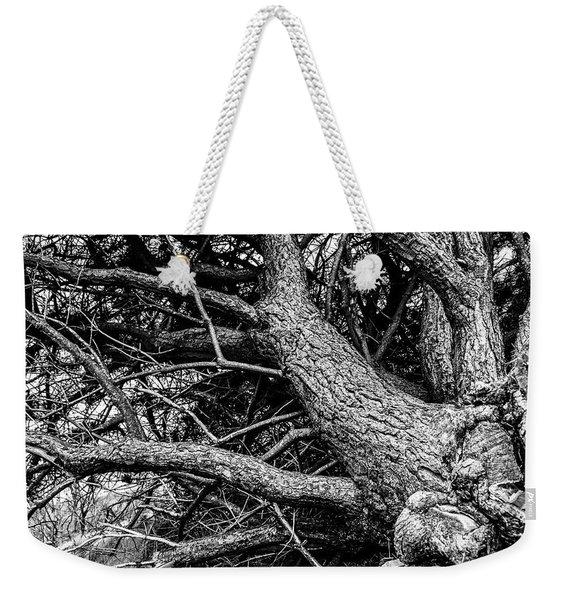 Trees, Leaning Weekender Tote Bag