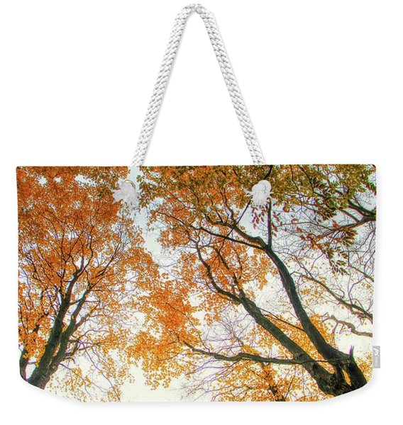 Trees Looking Up Weekender Tote Bag