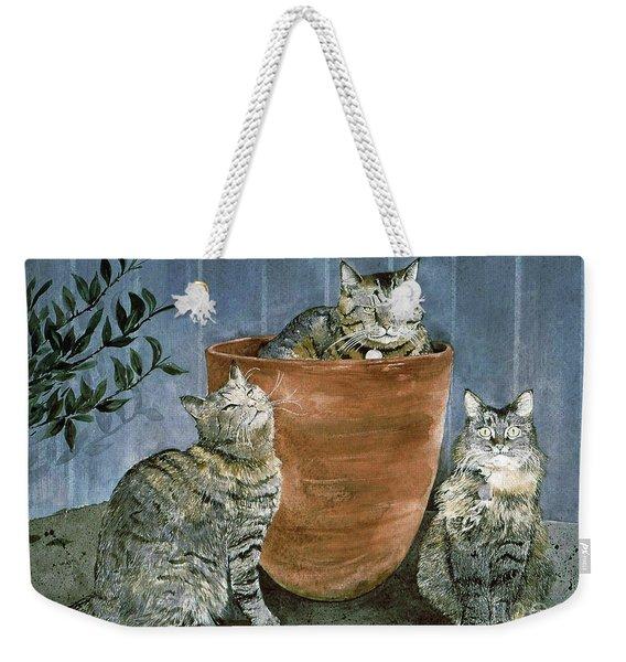 Tres Gatos Weekender Tote Bag