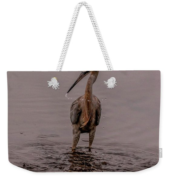Tri Colored Heron Weekender Tote Bag