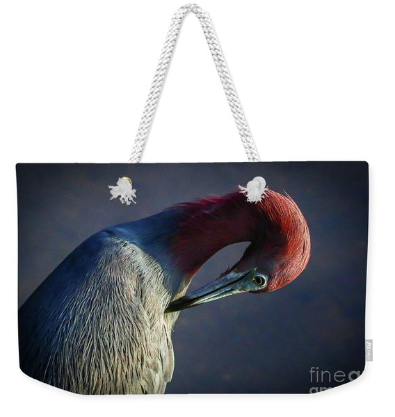 Weekender Tote Bag featuring the photograph Tricolor Preening by Tom Claud