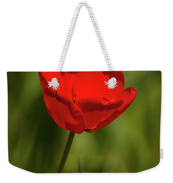 Tulip And Skipper Weekender Tote Bag