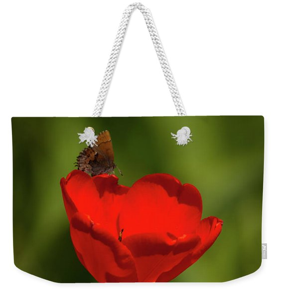 Tulip And Skipper Weekender Tote Bag