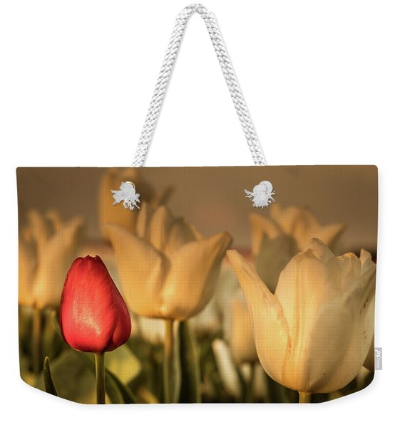Weekender Tote Bag featuring the photograph Tulip Field by Anjo ten Kate