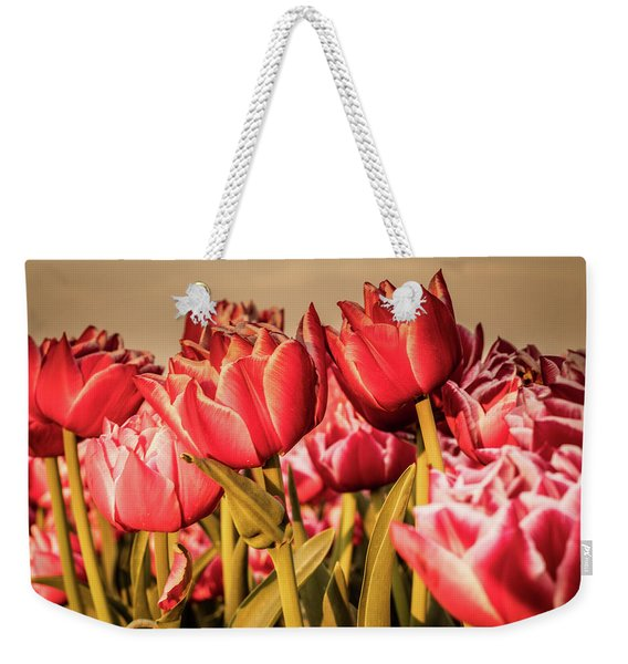 Weekender Tote Bag featuring the photograph Tulip Fields by Anjo Ten Kate