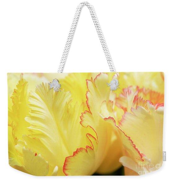 Tulipa Caribbean Parrot Petals Abstract Weekender Tote Bag