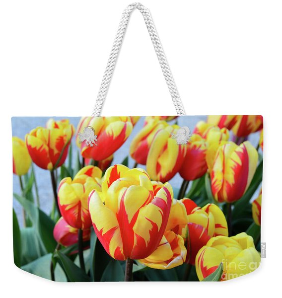 Tulips And Tiger Stripes Weekender Tote Bag