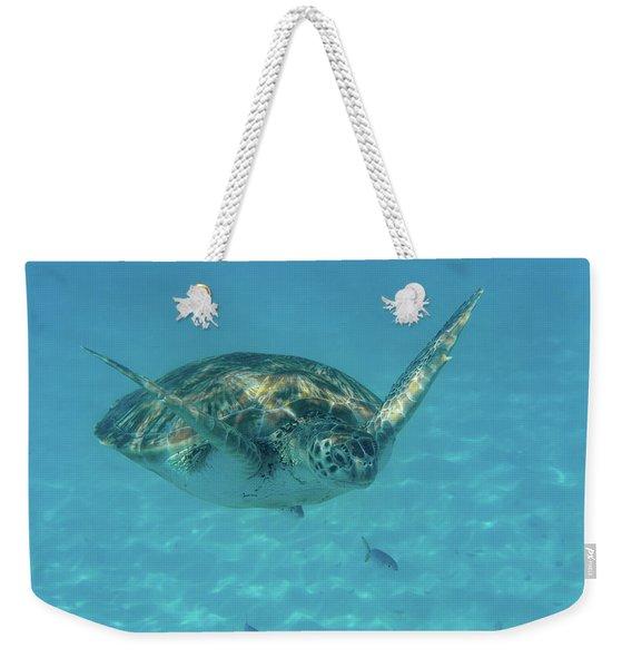 Turtle Approaching Weekender Tote Bag