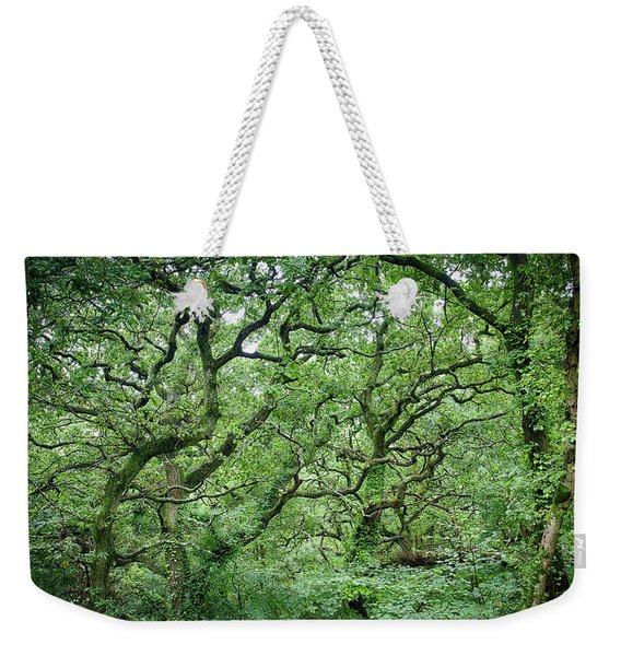 Twisted Forest Full Color Weekender Tote Bag
