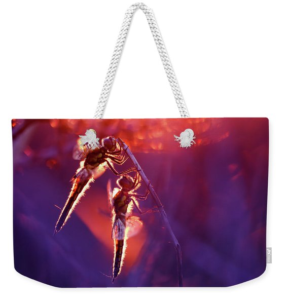 Two Can Keep A Secret - Dragonflies At Sunset Weekender Tote Bag