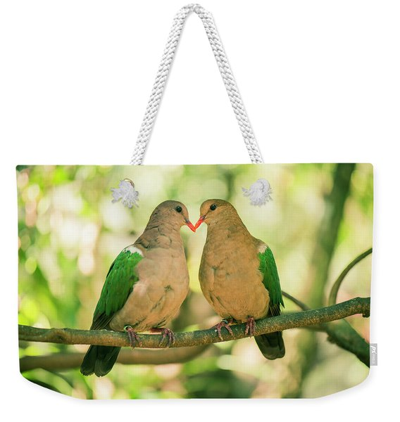 Two Colourful Doves Resting Outside On A Branch. Weekender Tote Bag