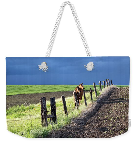 Two Horses In The Palouse Weekender Tote Bag