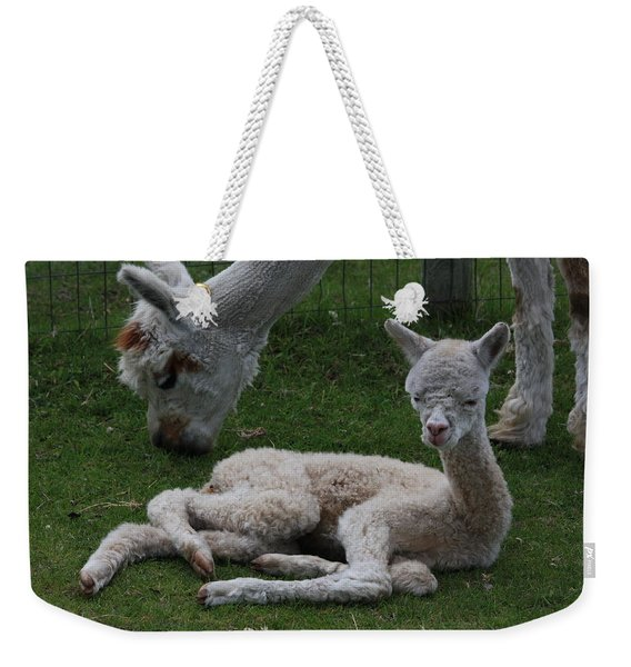 Two Hours Old Weekender Tote Bag