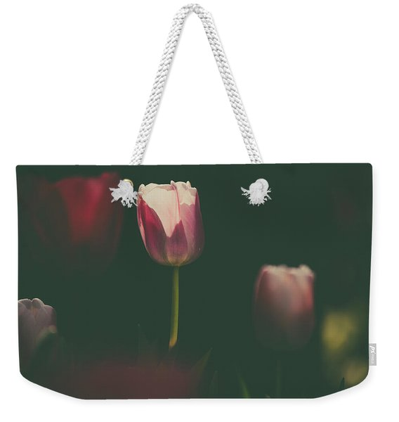 Weekender Tote Bag featuring the photograph Under The Beam by Dheeraj Mutha