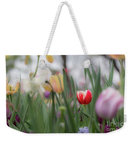 Weekender Tote Bag featuring the photograph Unique by Dheeraj Mutha